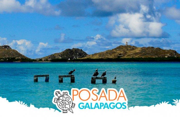 Galápagos – 2D/1N